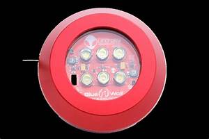 Looking To Replace Underwater Led U0026 39 S