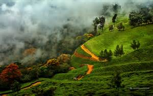 the best time to visit munnar paradise holidays cochin