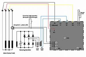 Wiring Diagram Avr Of Three Phase Generators  And