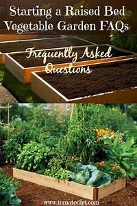 Starting A Raised Bed Vegetable Garden  Faqs
