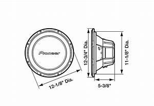 Amazon Com  Pioneer Ts