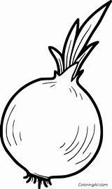 Onion Coloring Cebula Warzywa Owoce Vegetable Colorear Kolorowanka Frutas Verduras Printable Cebolla Vegetables Fruits Drawing Libro Disegni Colouring Kolorowania Obrazki sketch template