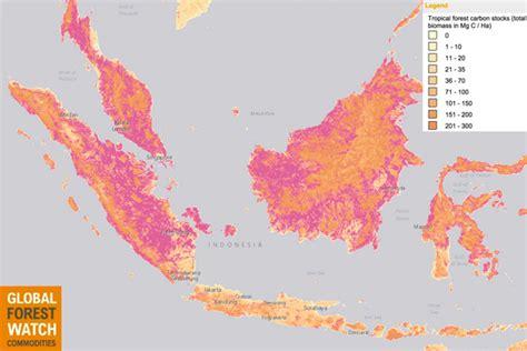 indonesias moratorium    achieve emissions