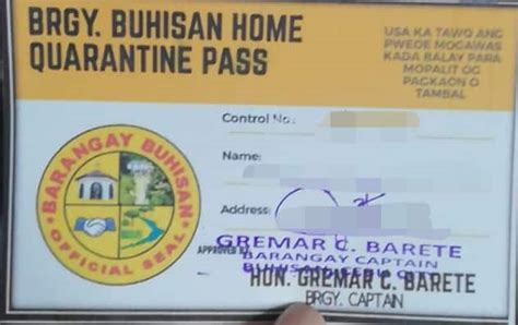 DILG: Quarantine passes are city government's prerogative ...