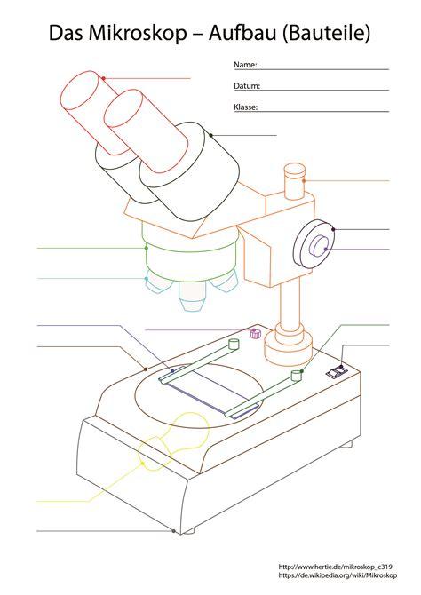 die version fr schler das mikroskop ein gert uns mitose