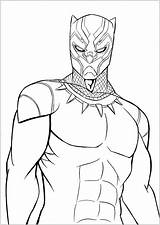 Panther Coloring Pages sketch template