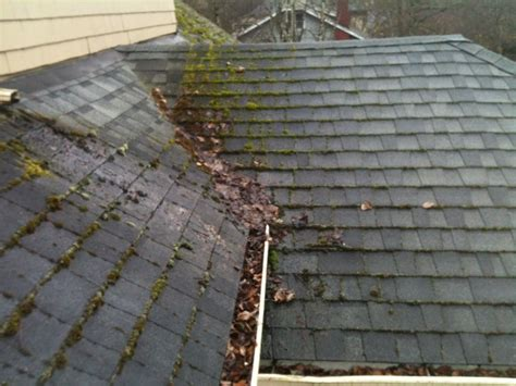 Roof Moss Removal & Cleaning Portland Oregon Red Roof Plus Atlanta Buckhead Roofing Contractors Panama City Florida How To Build A Over Deck Nz Repair Shingles Leak Brown Brothers Reviews Do It Yourself Installing Vents On Metal Supply Denver Co