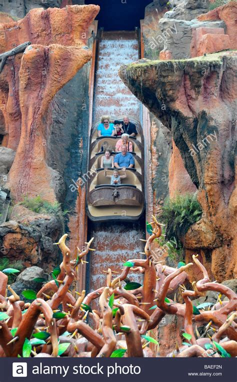 Splash Mountain Ride Walt Disney Magic Kingdom Theme Park