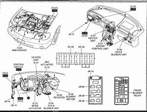 2006 Kia Optima Radio Wiring Diagram