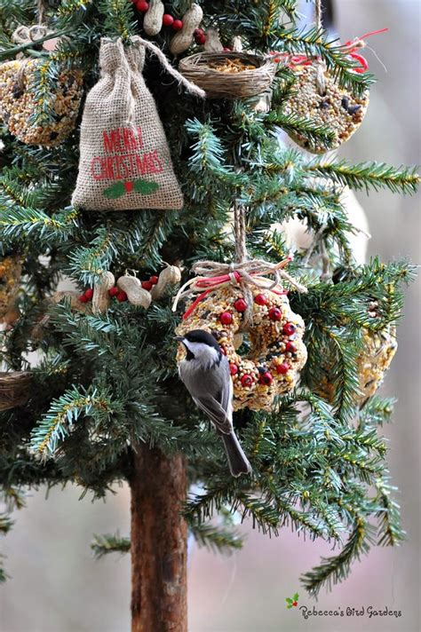 best 25 outdoor christmas tree decorations ideas on