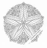 Coloring Adults Pages Complex Mandala Geometric Abstract Salvo Emerlyearts sketch template