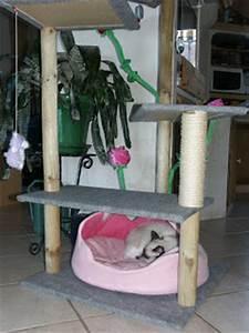 Arbre à Chat Fait Maison : le chaudron aux perles arbre chats fait maison ~ Melissatoandfro.com Idées de Décoration