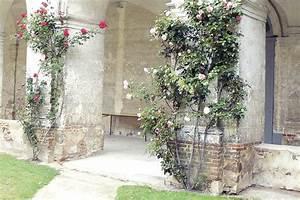 Feuchtigkeit In Wänden : aufsteigende feuchtigkeit aufsteigende feuchtigkeit kontrolle ~ Sanjose-hotels-ca.com Haus und Dekorationen
