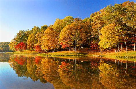 lake  autumn lake  autumn landscape