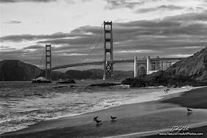 Nature Photos – Fine Art Nature Photos | Golden Gate's ...