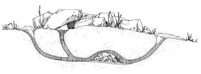 Burrow Clipart Burrowing Rats Hole Burrows Ground