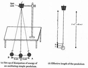 To Study Dissipation Of Energy Of A Simple Pendulum By Plotting A Graph Between Square Of