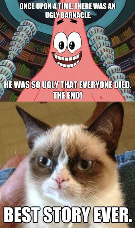 Omg Meme Grumpy Cat Memes Omg Amino