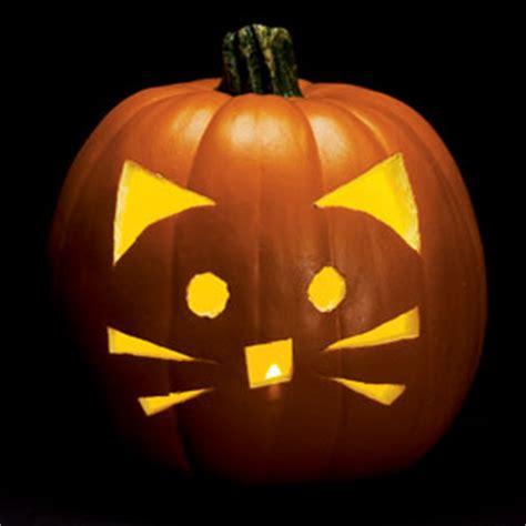 cat pumpkin ideas never listless 12 amazingly perfect pumpkin carving ideas
