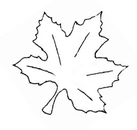 maple leaf embroidery pattern needlenthreadcom