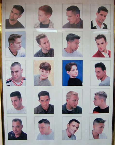 barbershop beard chart www imgkid the image kid
