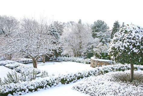 winter gardens landscapes   visually alive  winter