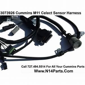 3073926 Cummins L10  U0026 M11 Celect  Prior To 1996  External Engine Sensor Wiring Harness