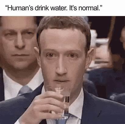 Zuckerberg Mark Congress Memes Hilarious Testifying Gifs