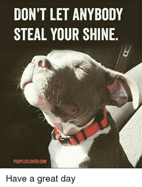Have A Great Day Meme - don t let anybody steal your shine purpleclovercom have a great day meme on me me