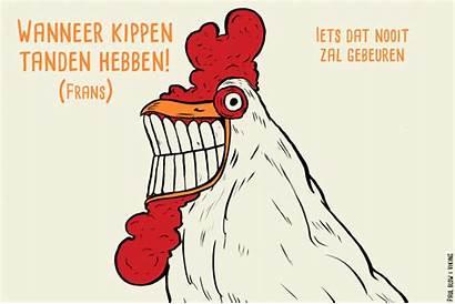 Uitdrukkingen Chicken Het Nederlands Leuke Een