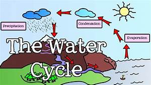 All About The Water Cycle For Kids  Introduction To The Water Cycle Earth Lesson 5  With Images