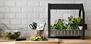 culture hors sol hydroponie ikea With katzennetz balkon mit indoor grow garden