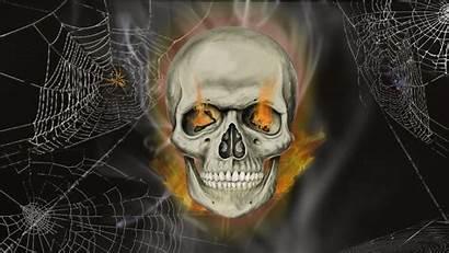 Skull Head Halloween Skullhead Frankief Wallpapertag Pro