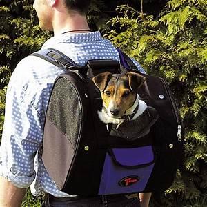 Autositz Für Hunde Bis 15 Kg : trage rucksack geeignet f r hunde bis 8 kg rucksack real ~ Frokenaadalensverden.com Haus und Dekorationen