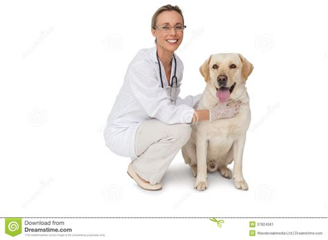 Pretty Vet Petting Yellow Labrador Dog Smiling At Camera ...
