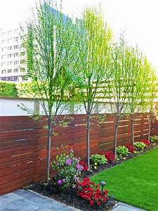 Spalierobst Als Sichtschutz : als zaun good bambus freiland sichtschutz solit r youtube with als zaun beautiful als zaun ~ Orissabook.com Haus und Dekorationen
