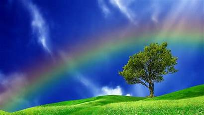 Rainbow Sky Background Rainbows Desktop Wallpapers Magnificent