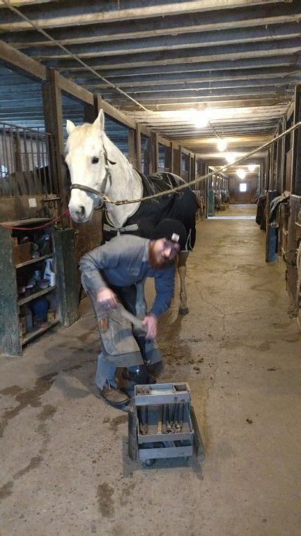 matt king farrier  oxford michigan