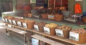 Pellkartoffeln In Mikrowelle : kartoffeln kochen wir sind im garten ~ Markanthonyermac.com Haus und Dekorationen