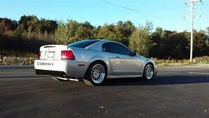 WTT (Want To Trade) 2003 Mustang Cobra Terminator - MINT - Trade for C6 - CorvetteForum ...
