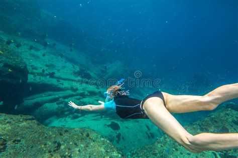 clear plans free diving stock photo image of exploration