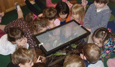 nature preschool schlitz audubon nature centerschlitz 914 | 09 preschool