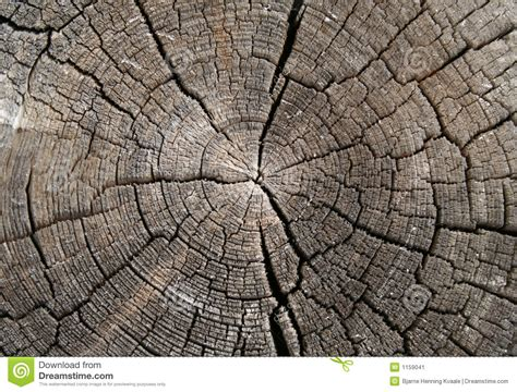 Wood Texture Stock Image. Image Of Backdrop, Organic