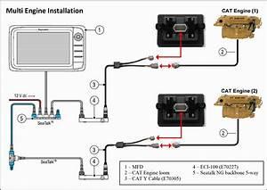 Raymarine Seatalk Wiring Diagram