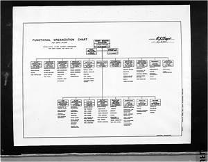 Cvac Functional Organization Chart The Portal To Texas