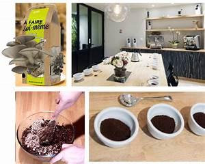 Cultiver Des Champignons De Paris Sans Kit : un atelier diy la boutique caf caron la boite champignons ~ Melissatoandfro.com Idées de Décoration
