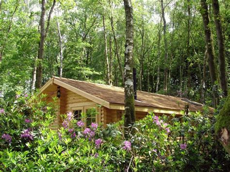 Campsites in Somerset   Chard   Alpine Grove Touring Park