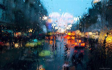beautiful rain wallpapers   desktop mobile