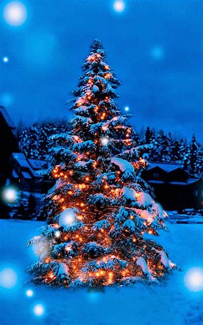 Christmas Snow Tree Lights Covered 4k Decoration