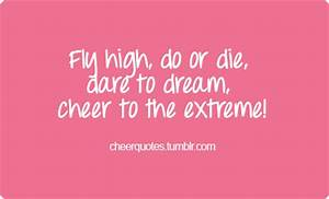 Fly high do or die dare to dream cheer to the extreme ...